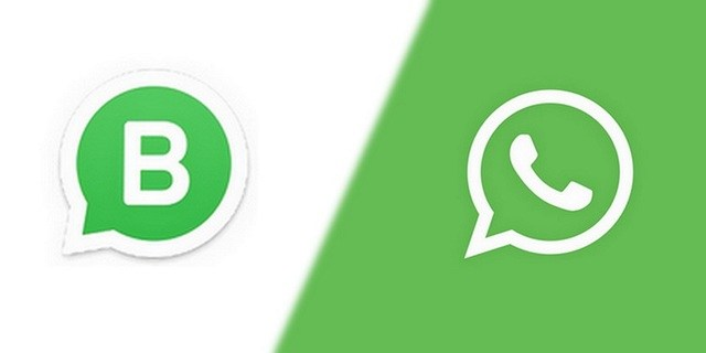 WhatsApp for Business Launched